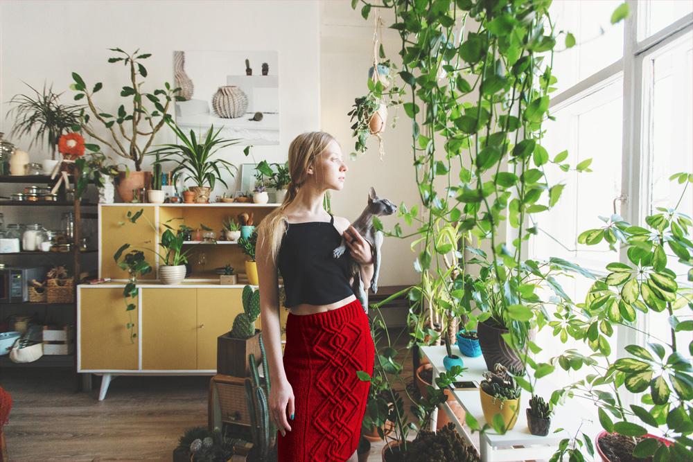 Piante Da Appartamento E Gatti.Piante Da Interno Il Segreto E L Umidita Assistenza Casa
